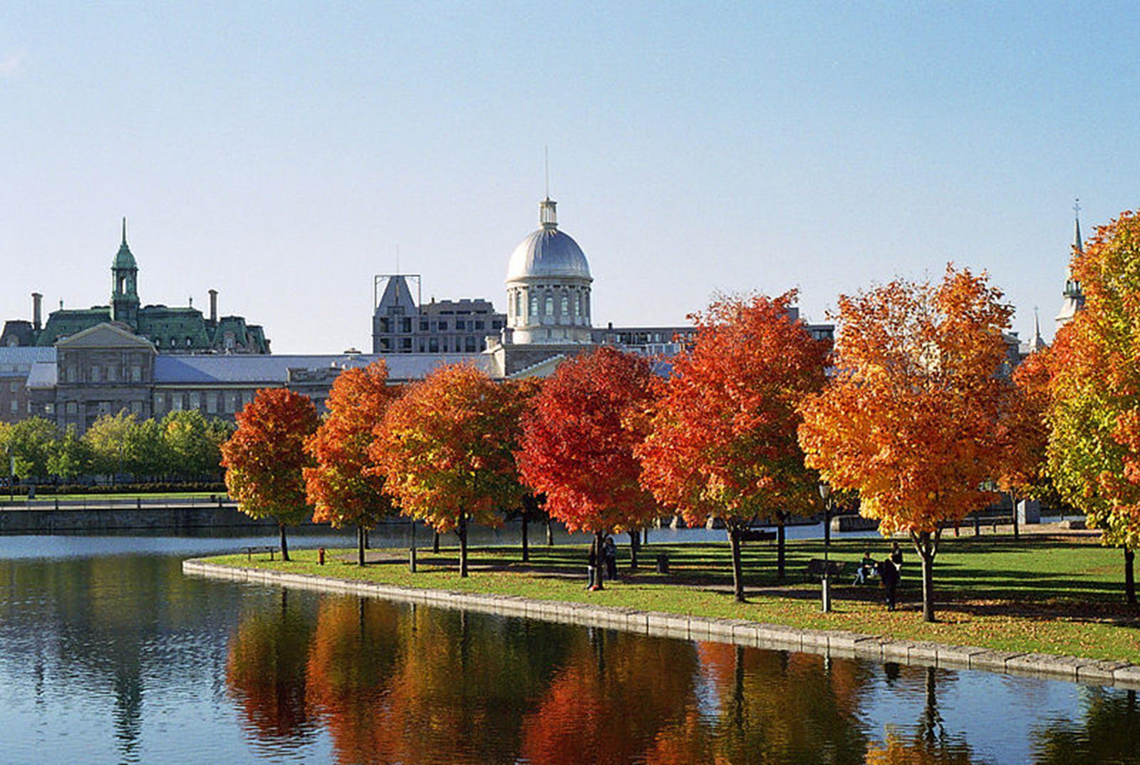 Discover Picturesque Montreal with Your Religious Travel Group