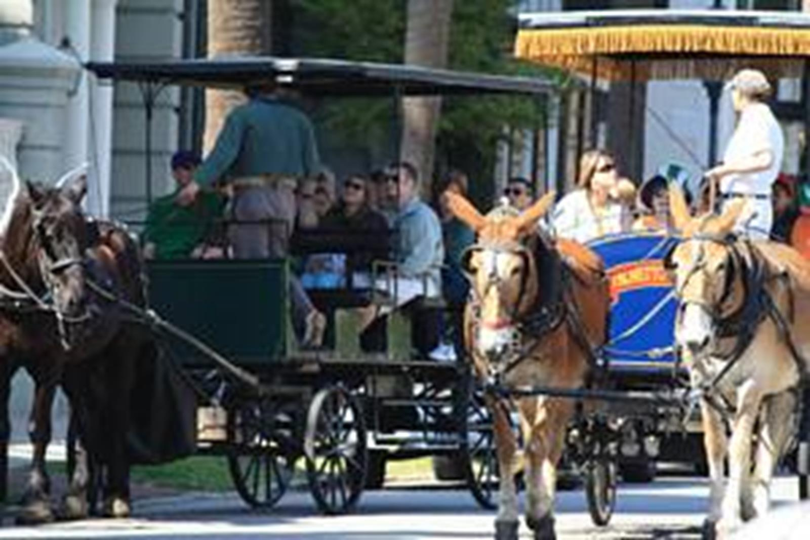 Charleston Carriage tours