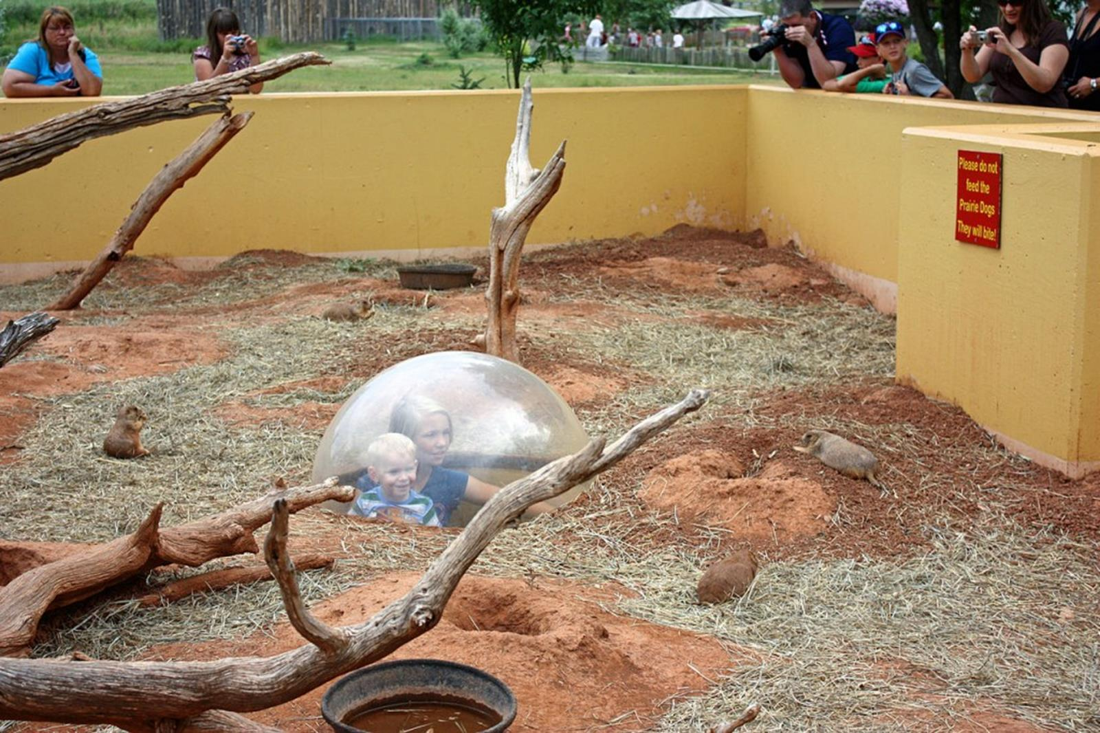 Prairie Dog Exhibit at Reptile Gardens
