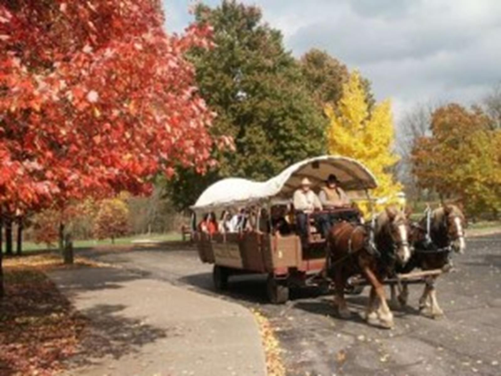 Historic Nauvoo Wagon Ride
