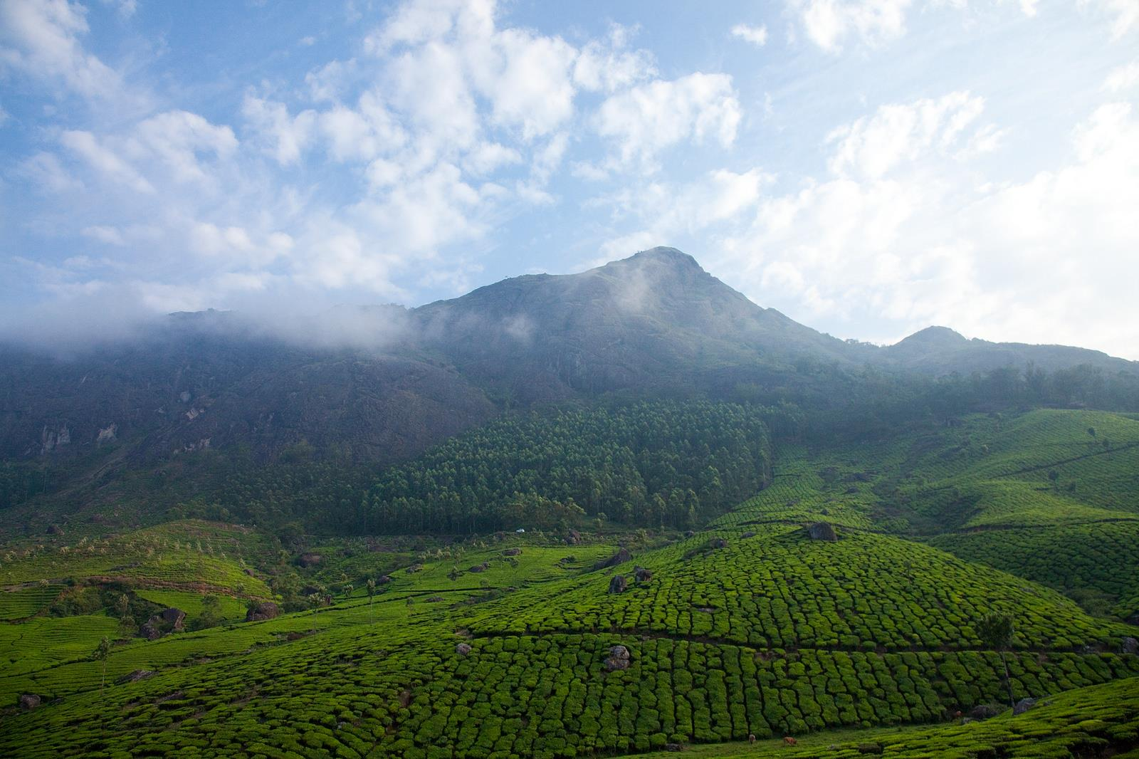 Top 6 Must See Places in God's Own Country – Kerala